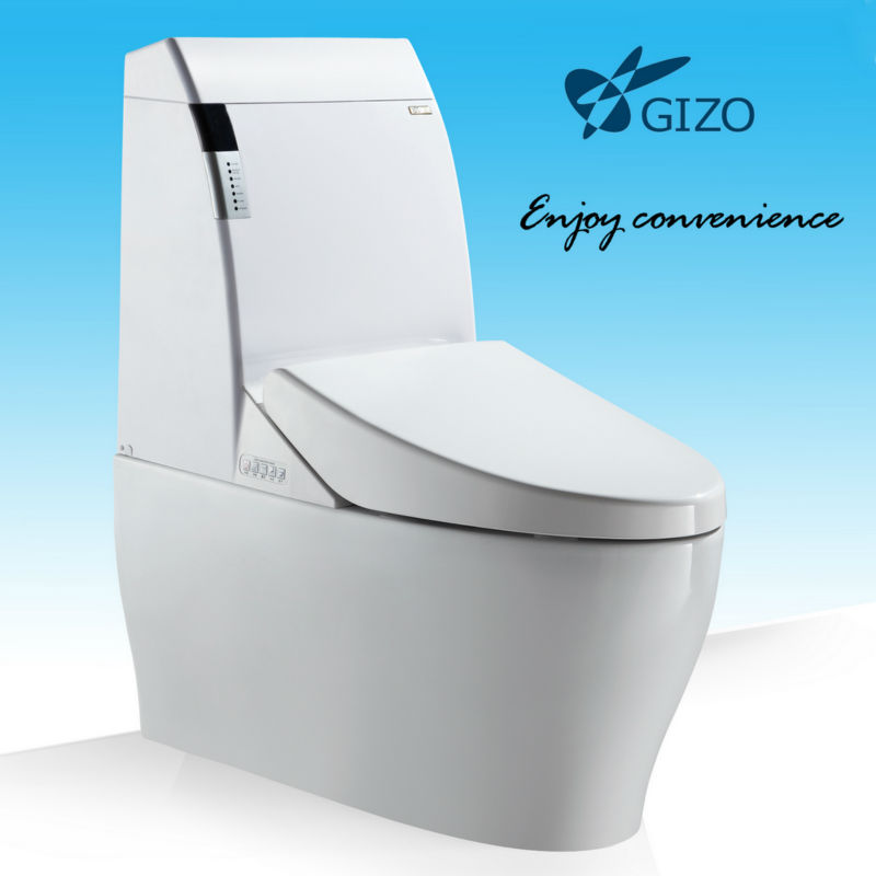 Floor Mounted P-trap Toilet