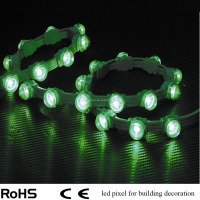 Customized led outdoor adverstisement light,led pixel string