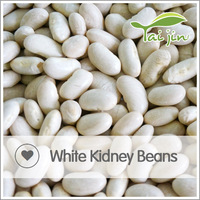 Hot Sale Great Northern White Kidney