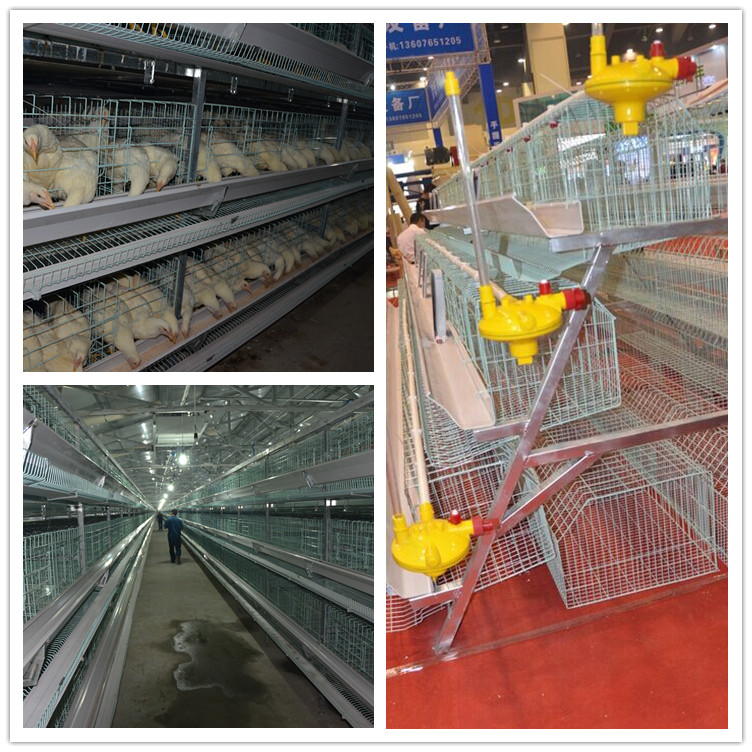 2017 Low price used poultry battery cages for layer chicken cages for farms in ghana