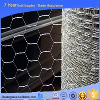 China supply best galvanized pvc coated chicken hexagonal wire mesh wire netting