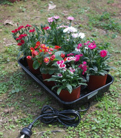 plant nurseries propagation tray