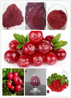 Anti-aging Pure Natural Cranberry Extract Powder.