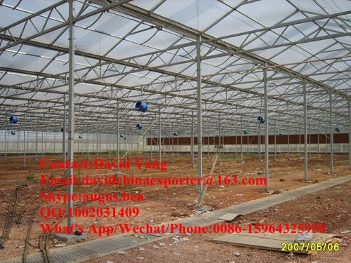 Large Size and Single Layer industrial prefabricated greenhouse