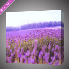 Nice outdoor field purple wall canvas art scenery painting by Epson machine