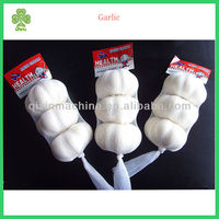 quality agriculture wholesale china natural garlic offer