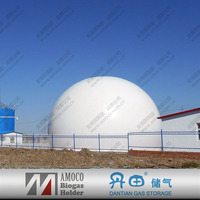 2015 Hot Sale Flexible Biogas Storage, Big Or Bullet Gas Tank or Storage