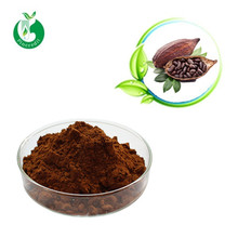 Natural Chocolate Cocas Powder With Factory Price