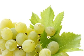 White Grape Juice Concentrate (Direct Sale From The Manufacturer)