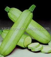 Hot Sale Zucchini Extract , Zucchini Extract Powder,Zucchini Extract Supplier 4:1~20:1