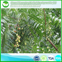 100% natural neem extract neem oil