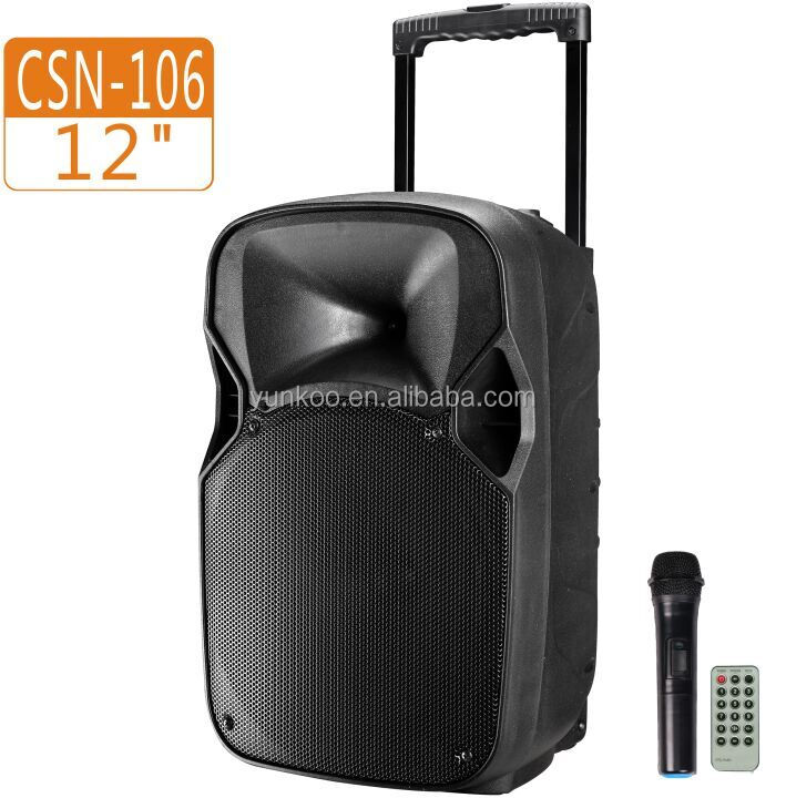 Top bluetooth FM radio USB SD card reader plastic professional multimedia outdoor stage portable trolley karaoke speaker