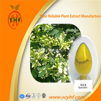 Manufacturer Direct Supply Sophora japonica flavonoids Quercetin