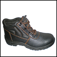 Fashionable Safety Shoes Cheap Price Esd