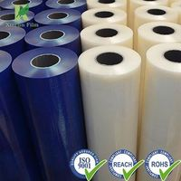 Professional PE Blue Protective Film Manufacturer with Low Price