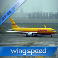 Door to door service DHL express freight forward from china to Puerto Rico Skype:bonmedlisa