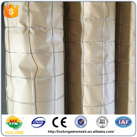 China professional cheap galvanized wire mesh rolls/1/2 inch square hole welded wire mesh/pvc coated welded