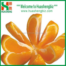 Sweet navel orange with best quality