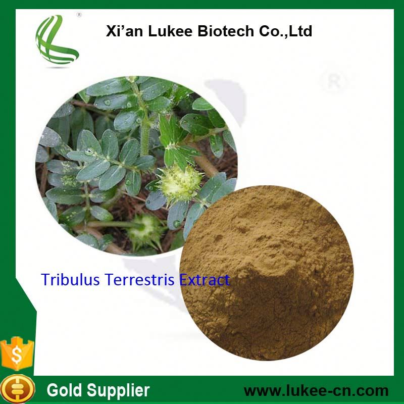 Tribulus Terrestris extract used as a female and male sexual performance enhancer