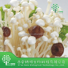 Top Quality Food Grade Golden needle mushroom Extract Powder Polysaccharide 30%