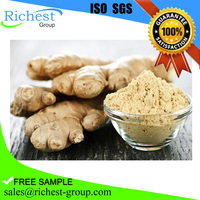 Ginger root extract for sale