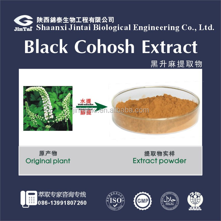 Black Cohosh Extract powder 2.5% 8% triterpenoid saponins