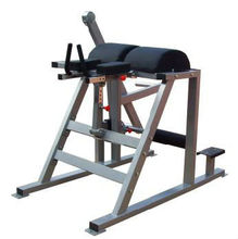 Reverse Hyper Extension(SH62)/Hammer Strength/Fitness Equipment