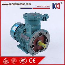 Durable In Use Low Rpm Explosion Proof Ac Electric Motor Ex With Different Speed