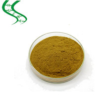 Top Quality White Mulberry Leaves Extract 1-deoxynojirimycin Powder