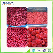 Fruits suppliers wholesale frozen raspberry from China
