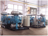 high pressure propylene ethylene gas compressor,oil free reciprocating fueling cylinder/power plant/food industry