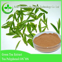 high quality green tea extract and green tea powder