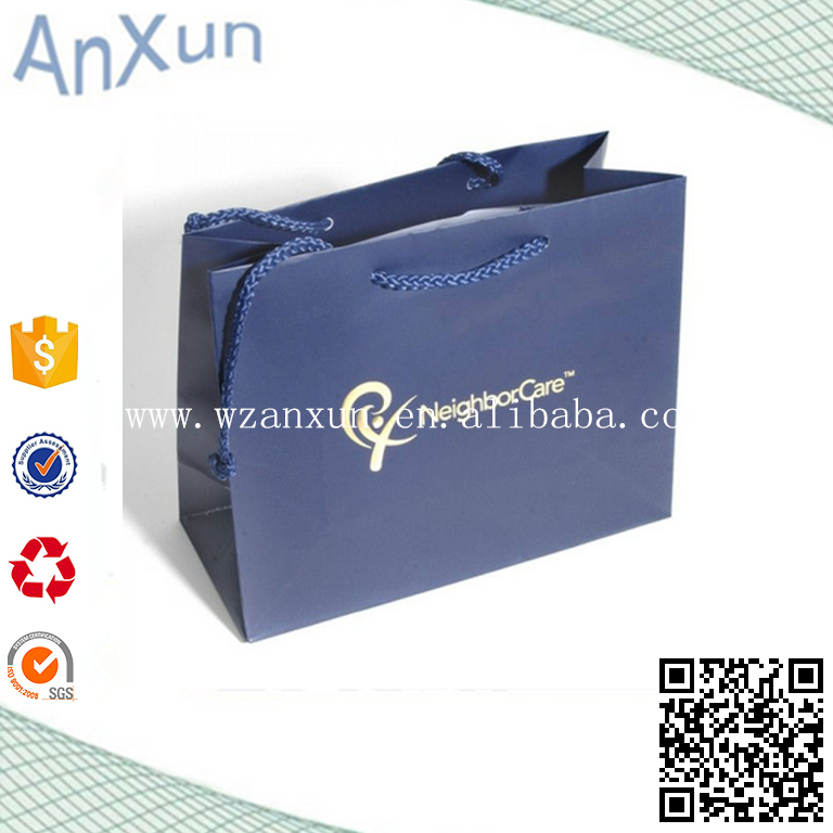 PP rope handle paper gift bag for T- shirt clothes packaging