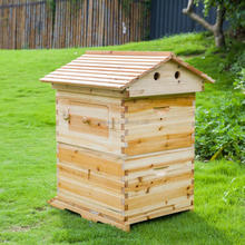 New stype beekeeping honey flow bee hive include one beehive house and 7pcs flow frames