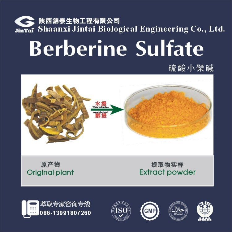 Natural herbal extract 98% Berberine Hydrochloride