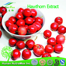100% Natural Hawthorn Berry Extract /Hawthorn Fruit P.E/ hawthorn berry extract