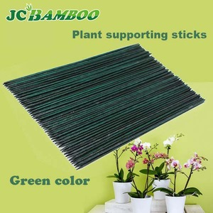 Natural Plant Support Bamboo Cane Sticks