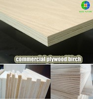2015 hot at wholesale wood 18mm commercial plywood birch