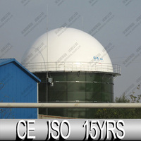 High strength polyester fabric Biogas Storage Balloon & Easy Installation