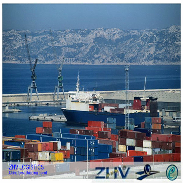 best logistics sea shipping company with good price