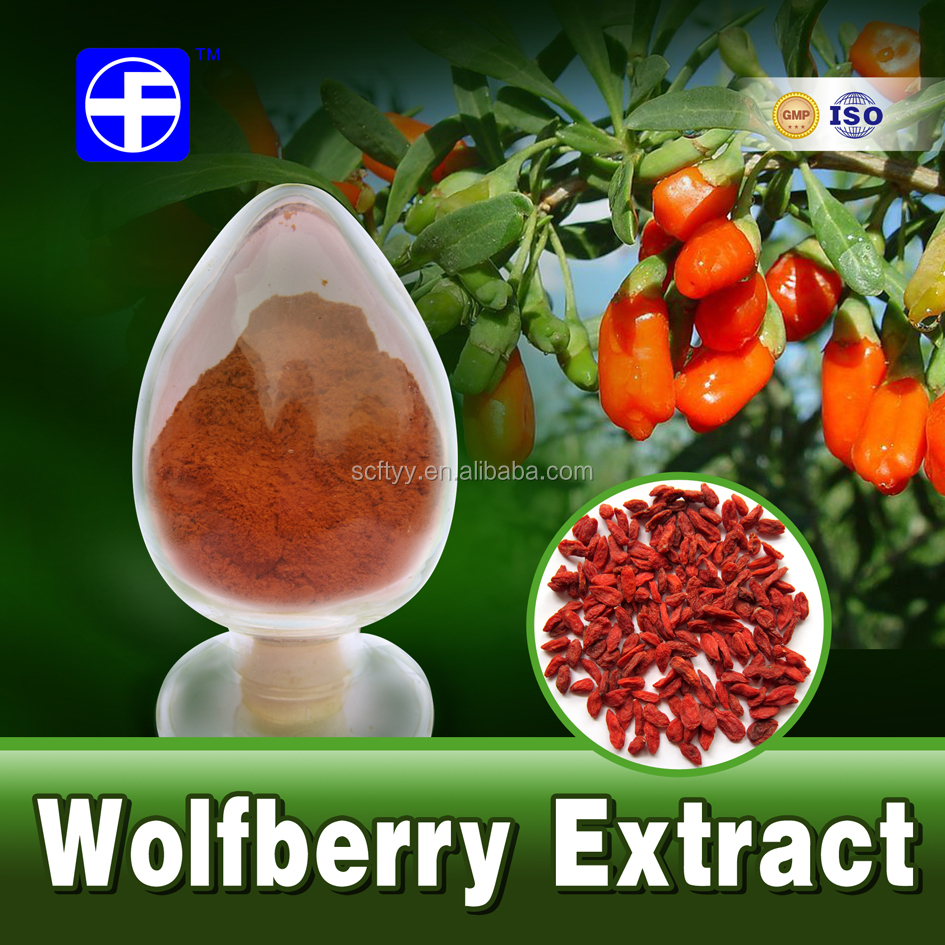Pure natural herbal extract wolfberry goji berry extract powder 10:1