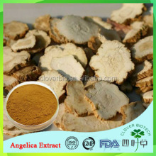 2017 wholesale low price Angelica sinensis Extract /dong quai extract powder
