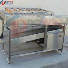 Electric Pumpkin Carrot Potato Washing Machine Cleaning Processing Line Price