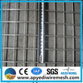 Galvanized Mesh,Galvanised mesh good price