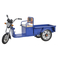high quality durable cargo electric tricycle differential for adults
