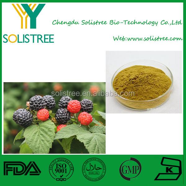 promotion red raspberry plants list