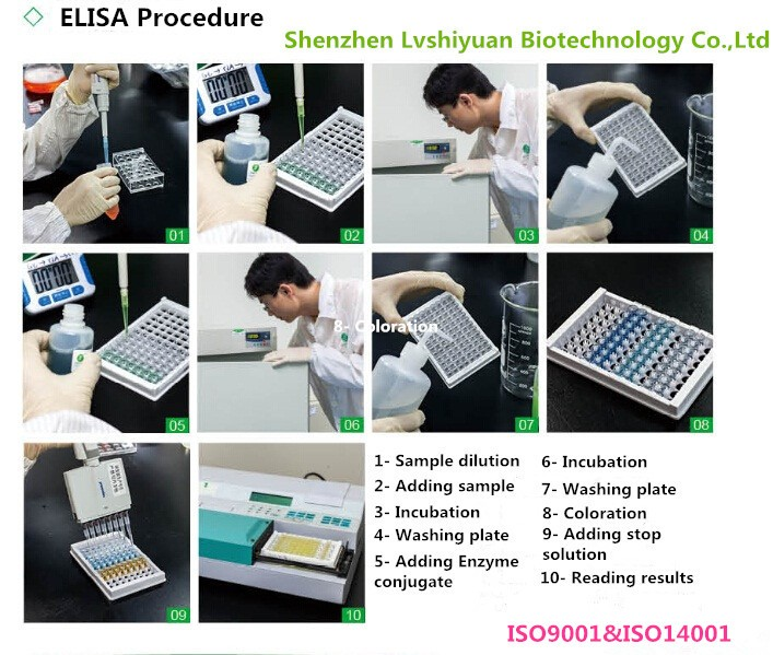 LSY-30012-2 Rabies virus antibody ELISA kit for Dog and cat ISO Approved