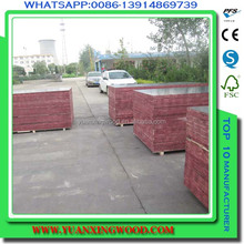hardplex plywood chinese marine plywood
