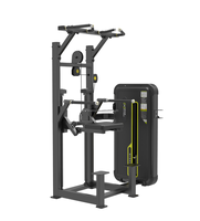 DHZ Competitive Price 3mm thickness Dip/Chin Assist Used Gym Equipment for Sales