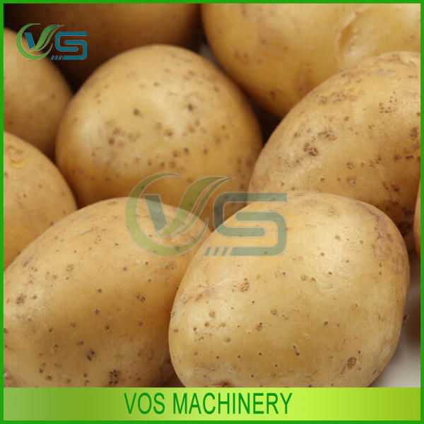 easy to operate potato chips making machine/potato slicer for sale